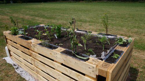 Neues Kräuter- und Gemüsehochbeet errichtet