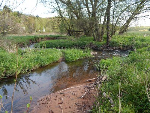 Trockenheit bedroht Bäche und kleine Flüsse